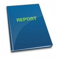 Services I provide_Report Writing